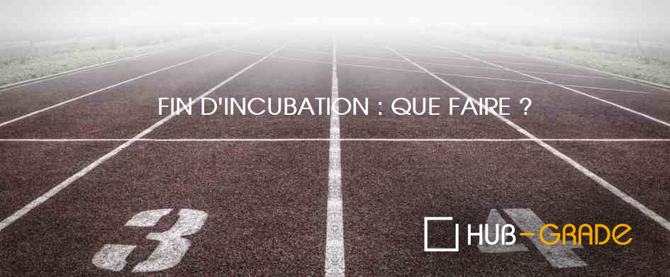 fin-dincubation