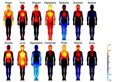 Réactions corporelles réponses émotionnelles